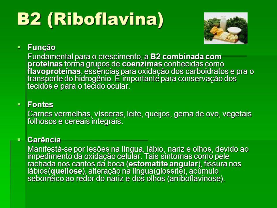 B6 (Piridoxina) Função Função É indispensável em muitos processos bioquímicos complexos, mediante os quais os nutrientes são metabolizados no organismo.