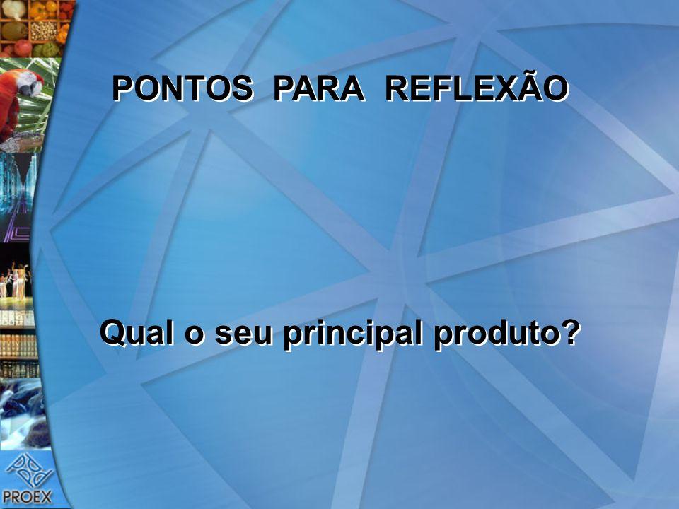 PONTOS PARA REFLEXÃO Qual o seu principal produto? PONTOS PARA REFLEXÃO Qual o seu principal produto?
