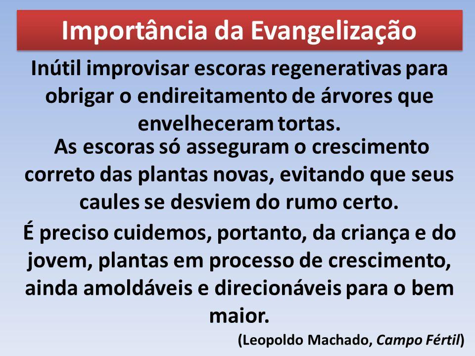 Importância da Evangelização Inútil improvisar escoras regenerativas para obrigar o endireitamento de árvores que envelheceram tortas. As escoras só a