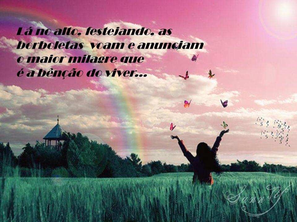 Lá no alto, festejando, as borboletas voam e anunciam o maior milagre que é a bênção do viver...