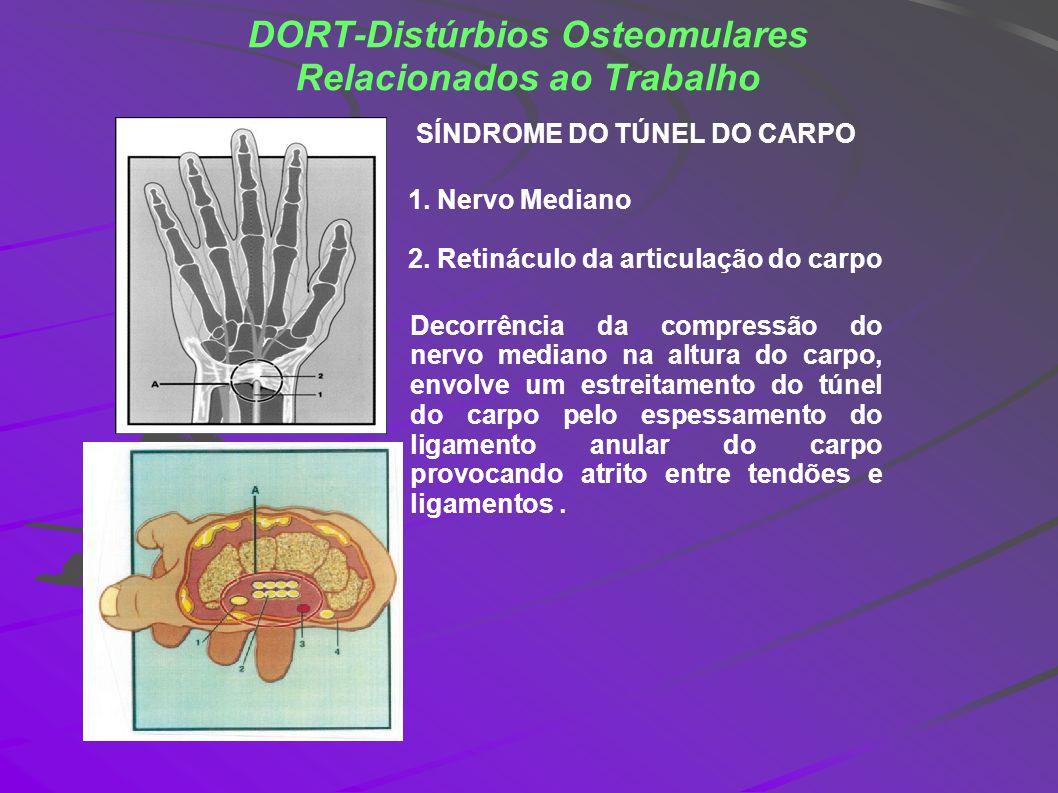 DORT-Distúrbios Osteomulares Relacionados ao Trabalho 1. Nervo Mediano 2. Retináculo da articulação do carpo SÍNDROME DO TÚNEL DO CARPO Decorrência da