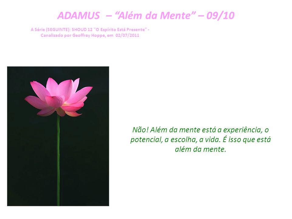 ADAMUS – Além da Mente – 08/10 A Série (SEGUINTE): SHOUD 12 O Espírito Está Presente - Canalizado por Geoffrey Hoppe, em 02/07/2011 Então, ir além da mente – o que acontece.