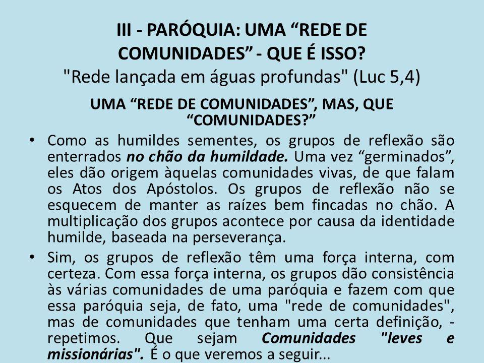 III - PARÓQUIA: UMA REDE DE COMUNIDADES - QUE É ISSO?