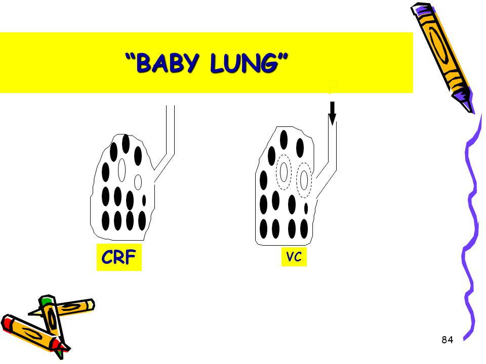 BABY LUNG CRF P VC 84