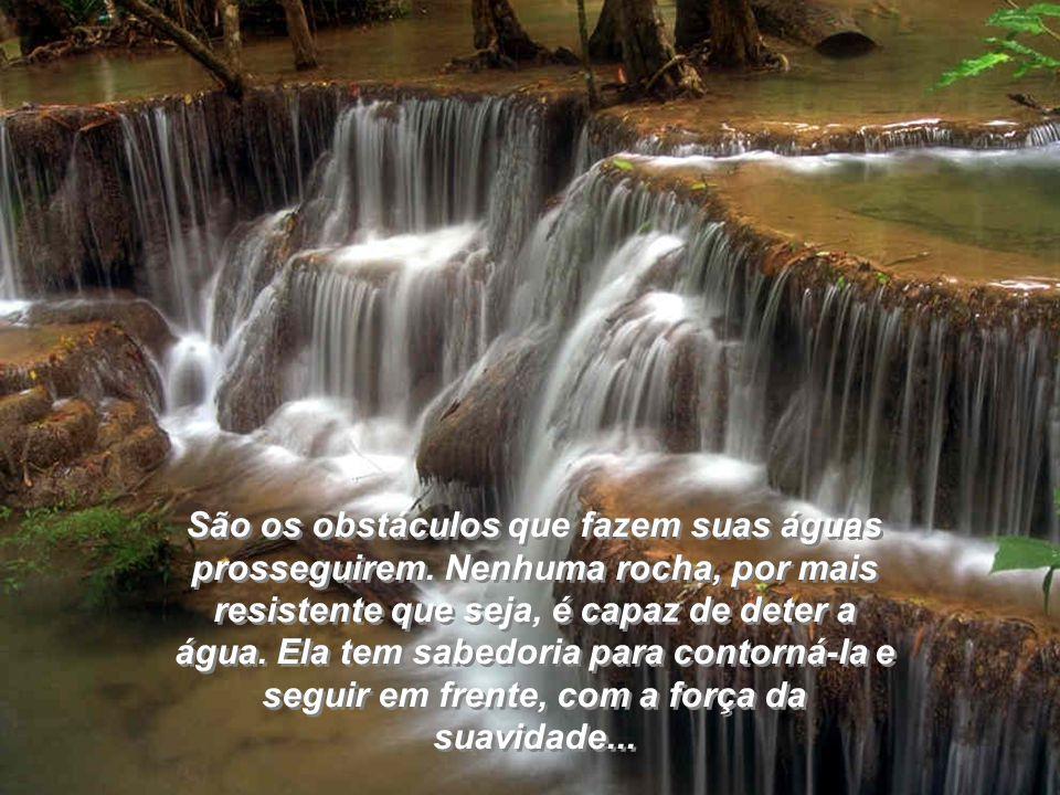 São os obstáculos que fazem suas águas prosseguirem.