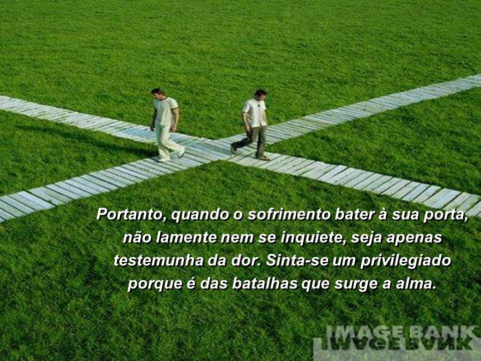Assim também é a nossa vida. Os obstáculos existem para nos fazer caminhar cada vez mais firmes, mais determinados, totalmente entregues, confiantes n