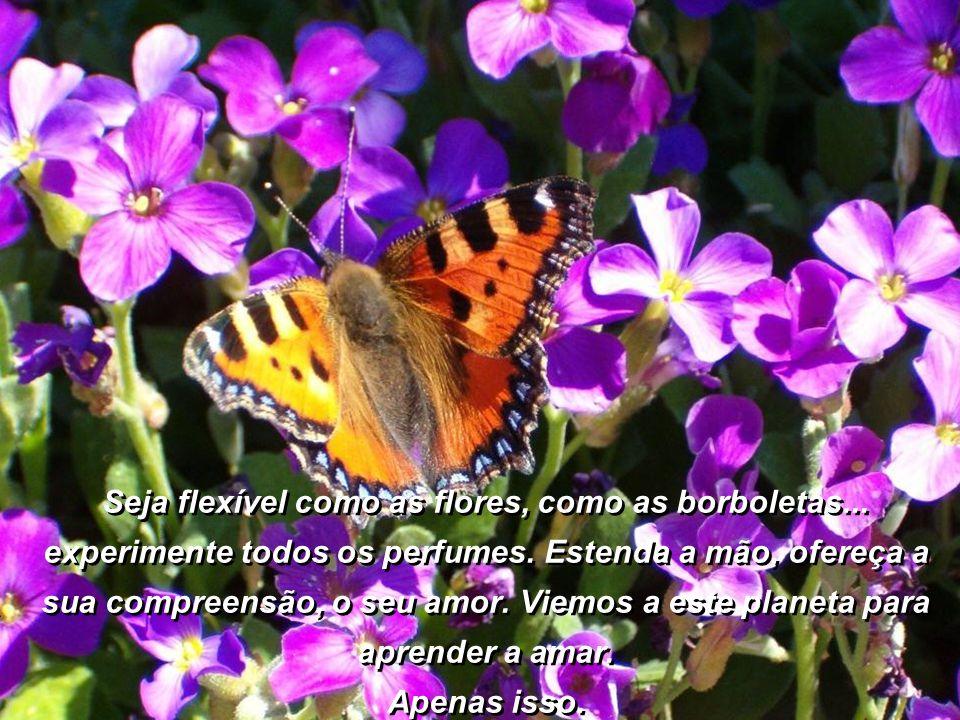 Seja flexível como as flores, como as borboletas...