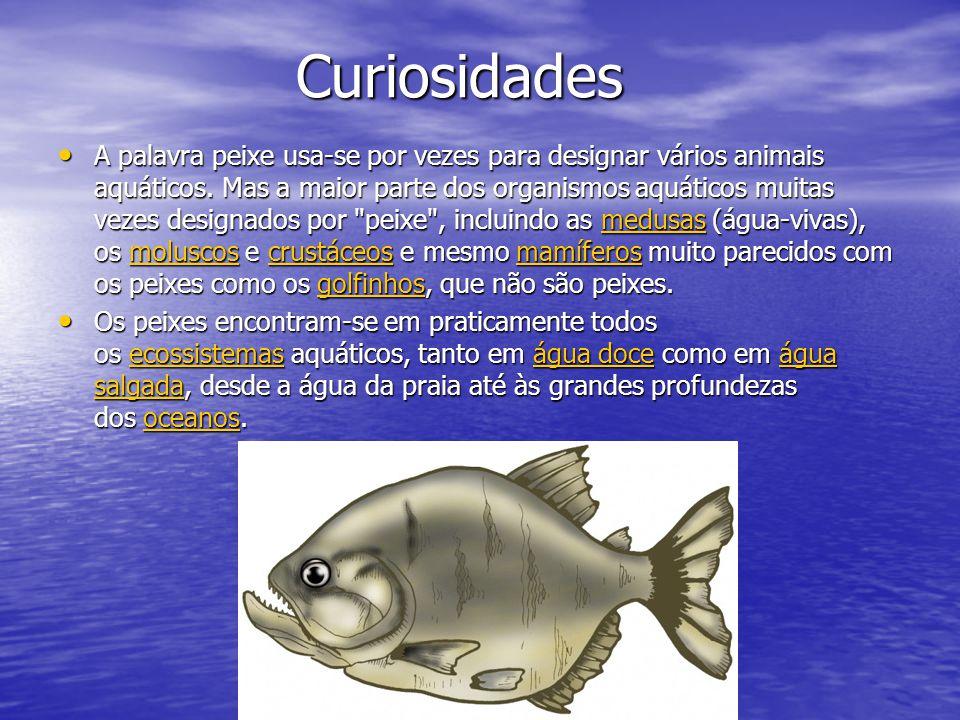 Curiosidades Curiosidades A palavra peixe usa-se por vezes para designar vários animais aquáticos.