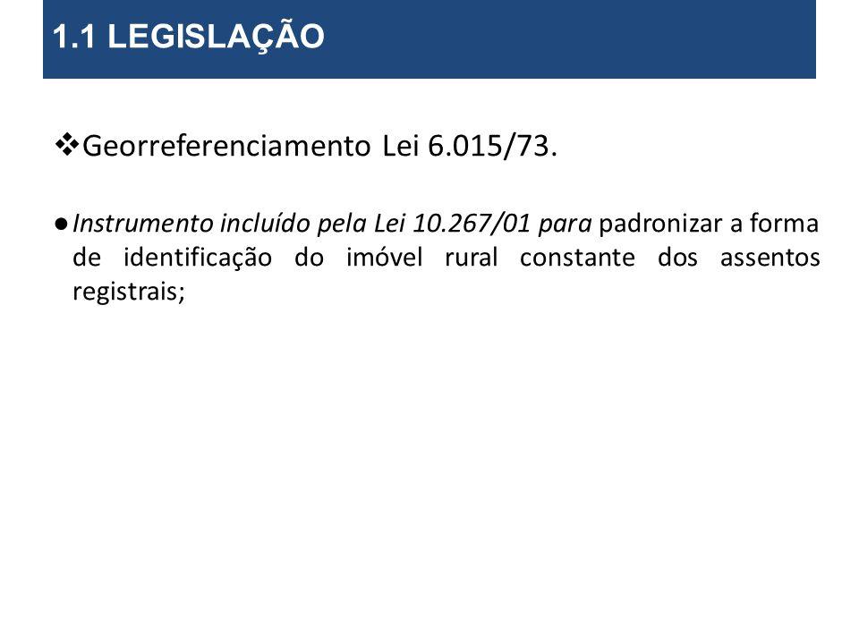 Georreferenciamento Lei 6.015/73.Art. 176......