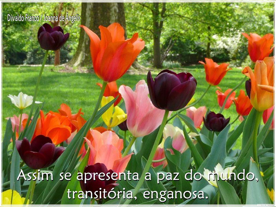 Assim se apresenta a paz do mundo, transitória, enganosa.