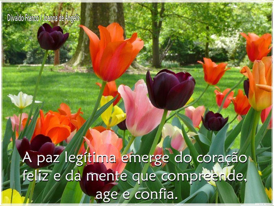 A paz legítima emerge do coração feliz e da mente que compreende, age e confia.