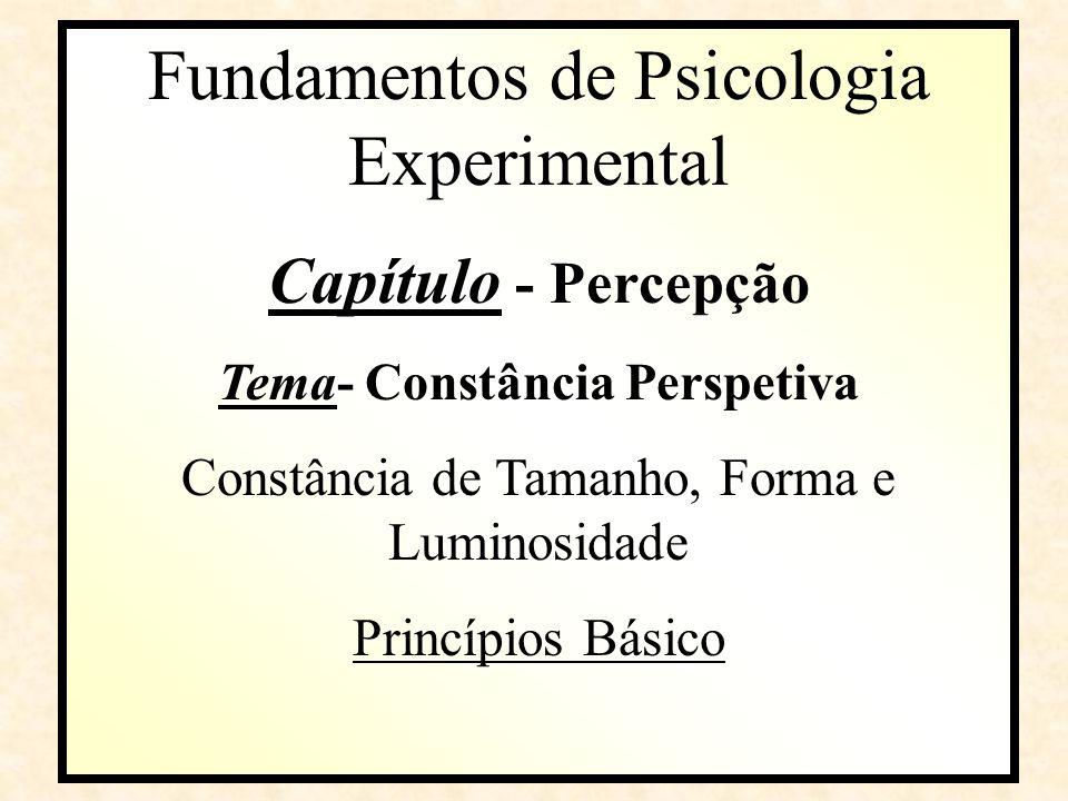 Fundamentos de Psicologia Experimental Capítulo Capítulo - Percepção Tema- Constância Perspetiva Constância de Tamanho, Forma e Luminosidade Princípios Básico