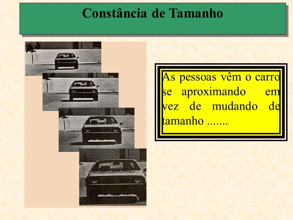Constância de Tamanho As pessoas vêm o carro se aproximando em vez de mudando de tamanho.......