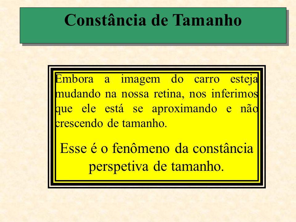 Constância de Tamanho A constância perspetiva de tamanho envolve percepção de profundidade.