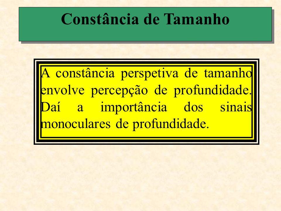 Constância de Tamanho Veja algumas ilusões relacionadas com o fenômeno da constância perspetiva de tamanho