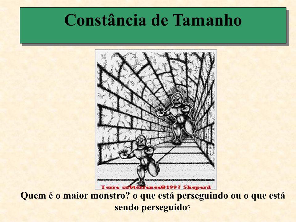 Constância de Tamanho Os dois monstros são iguais Essa duas retas são iguais e tem exatamente o mesmo tamanho dos dois monstros.