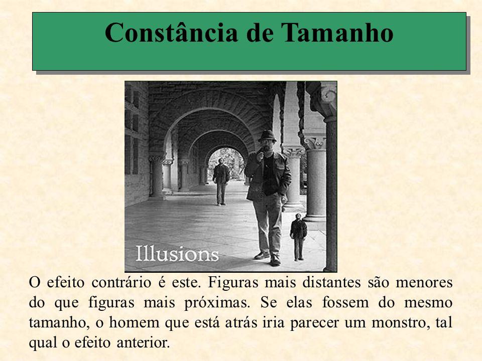 Constância de Tamanho Vejamos agora outro efeito de ilusão relacionado com o fenômeno da constância perspetiva de tamanho.