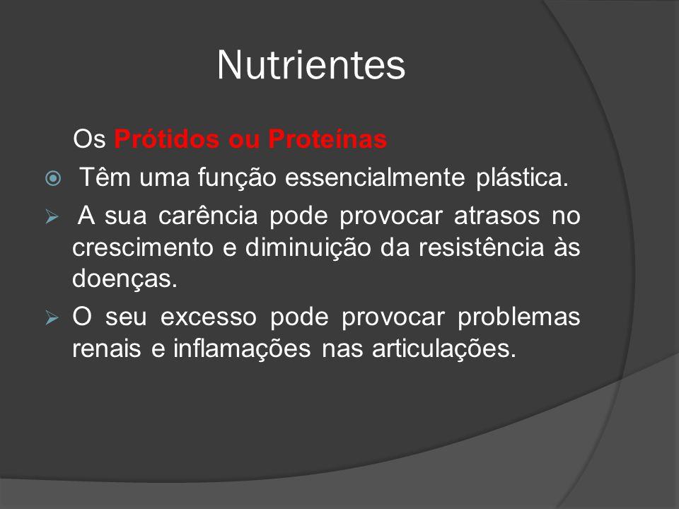 Os Prótidos ou Proteínas Têm uma função essencialmente plástica. A sua carência pode provocar atrasos no crescimento e diminuição da resistência às do