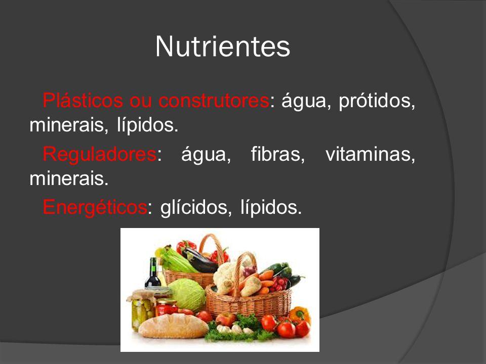 Nutrientes Plásticos ou construtores: água, prótidos, minerais, lípidos. Reguladores: água, fibras, vitaminas, minerais. Energéticos: glícidos, lípido