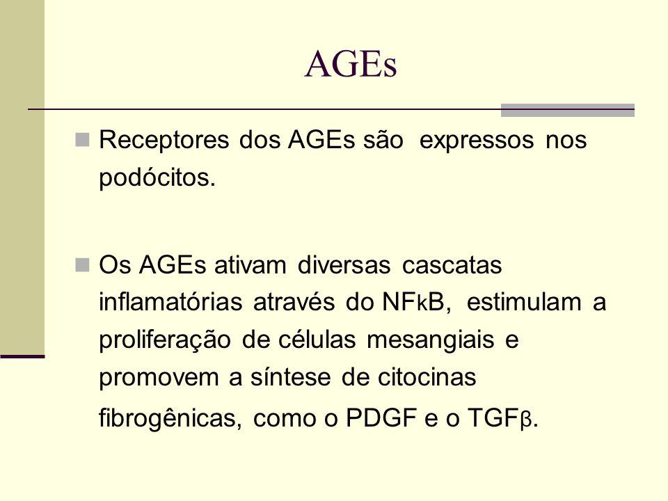 AGEs Receptores dos AGEs são expressos nos podócitos. Os AGEs ativam diversas cascatas inflamatórias através do NF k B, estimulam a proliferação de cé