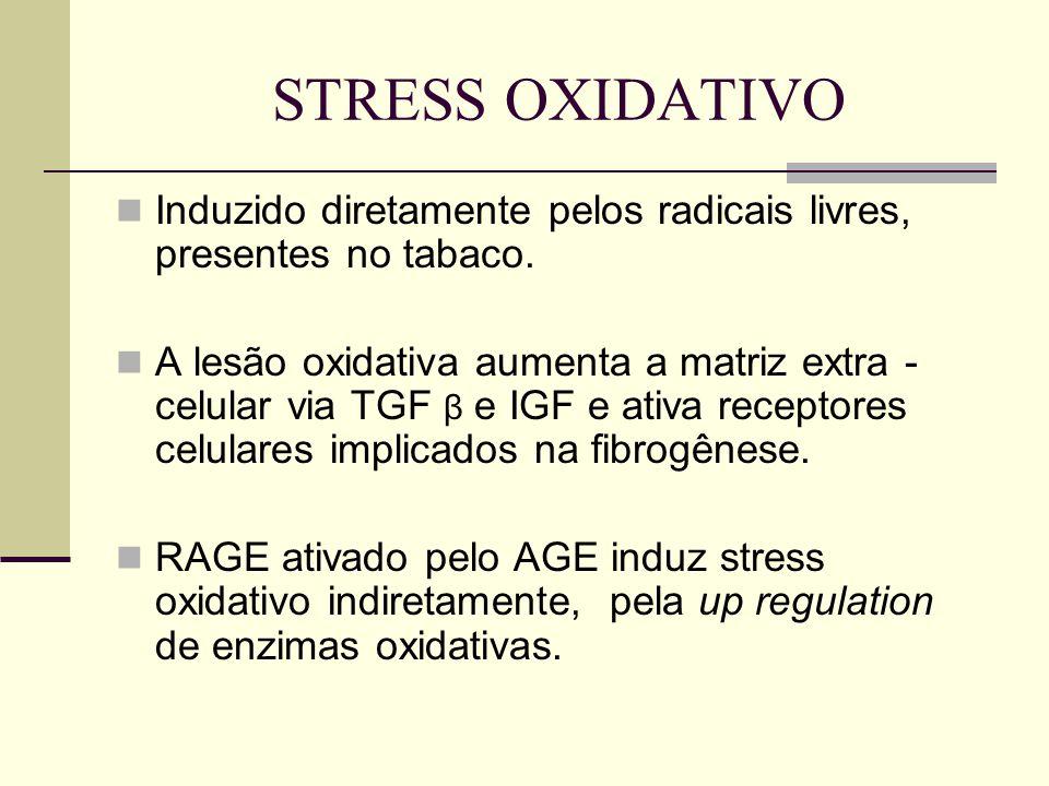 STRESS OXIDATIVO Induzido diretamente pelos radicais livres, presentes no tabaco. A lesão oxidativa aumenta a matriz extra - celular via TGF β e IGF e