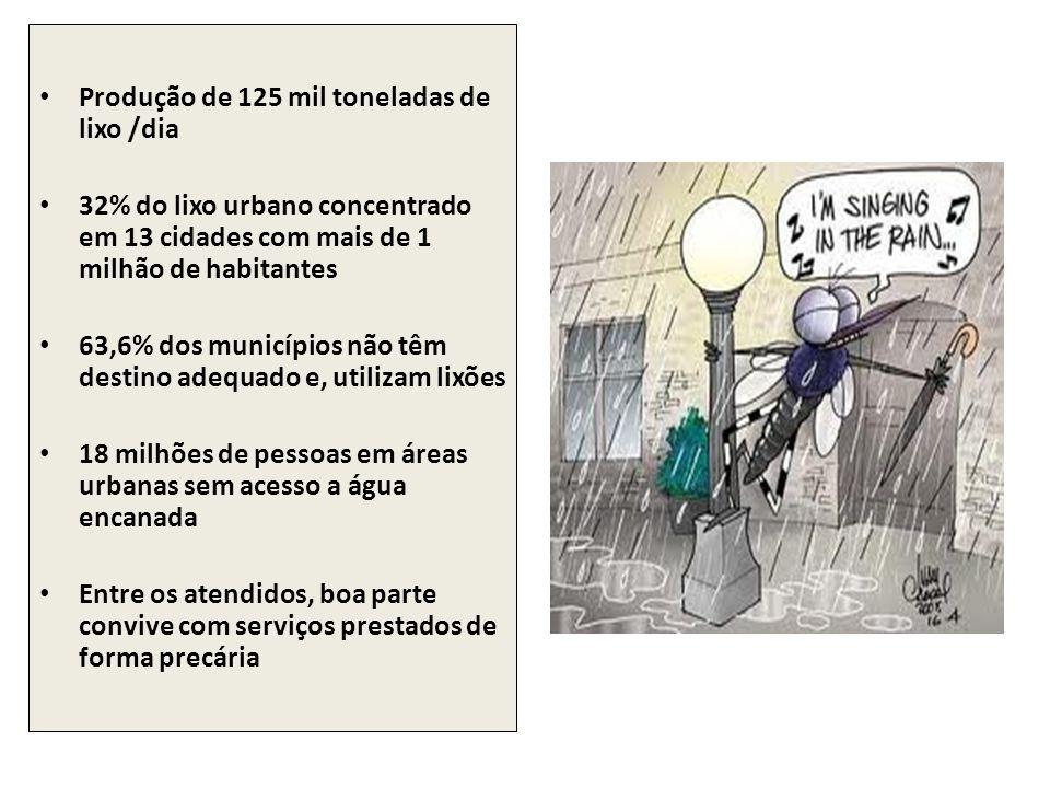 Produção de 125 mil toneladas de lixo /dia 32% do lixo urbano concentrado em 13 cidades com mais de 1 milhão de habitantes 63,6% dos municípios não tê
