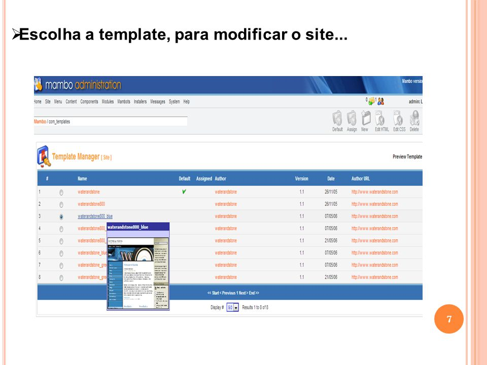 8 Template escolhida, e site modificado.