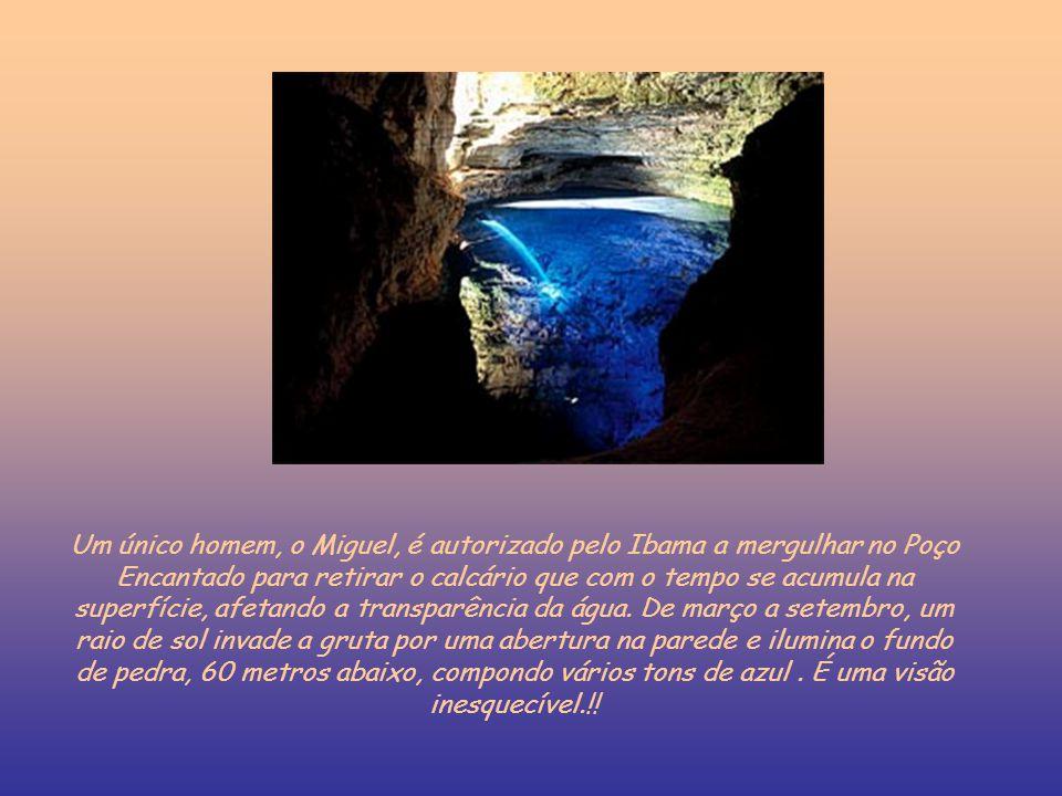Um único homem, o Miguel, é autorizado pelo Ibama a mergulhar no Poço Encantado para retirar o calcário que com o tempo se acumula na superfície, afet