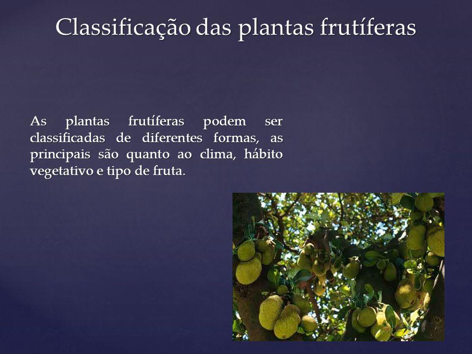 Quanto ao tipo de fruta as frutíferas podem ser classificadas: Fruta com sementes – maçã e pêra; Frutas com caroços – pêssego e ameixa; Frutas com sementes carnosas – romã; Frutas em bagas – uva e groselha; Frutas em espirídio – citros; Frutas agregadas – framboesa; Frutas compostas – figo; Frutas secas – noz pecã; Frutas nativas comestíveis – araçá, pitangueira, araticum.