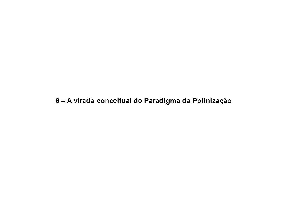 6 – A virada conceitual do Paradigma da Polinização