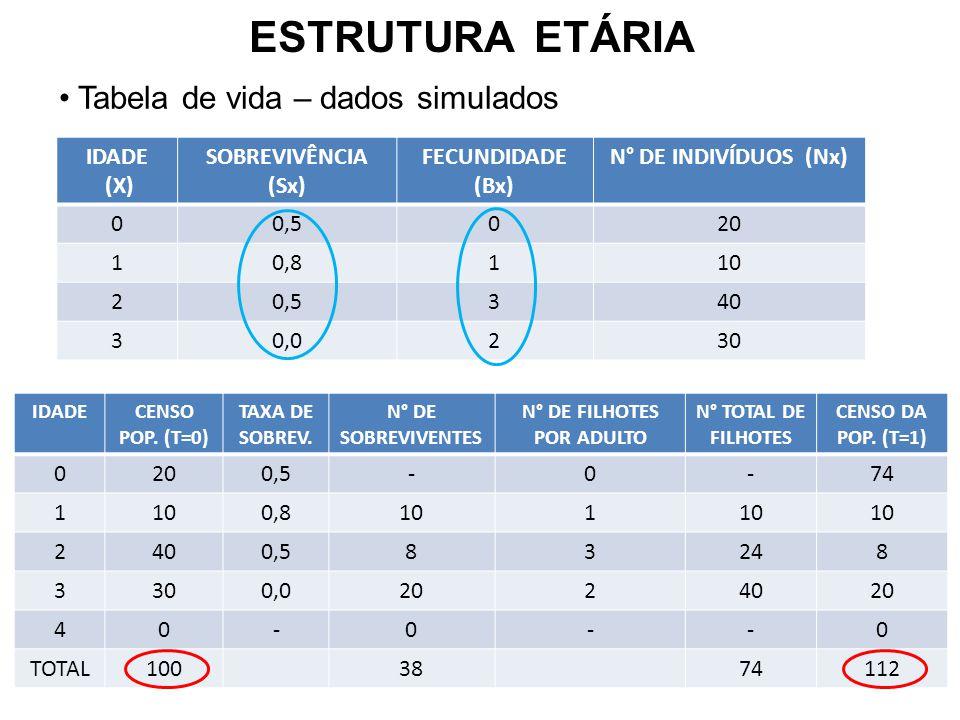 ESTRUTURA ETÁRIA Tabela de vida – dados simulados IDADE (X) SOBREVIVÊNCIA (Sx) FECUNDIDADE (Bx) N° DE INDIVÍDUOS (Nx) 00,5020 10,8110 20,5340 30,0230