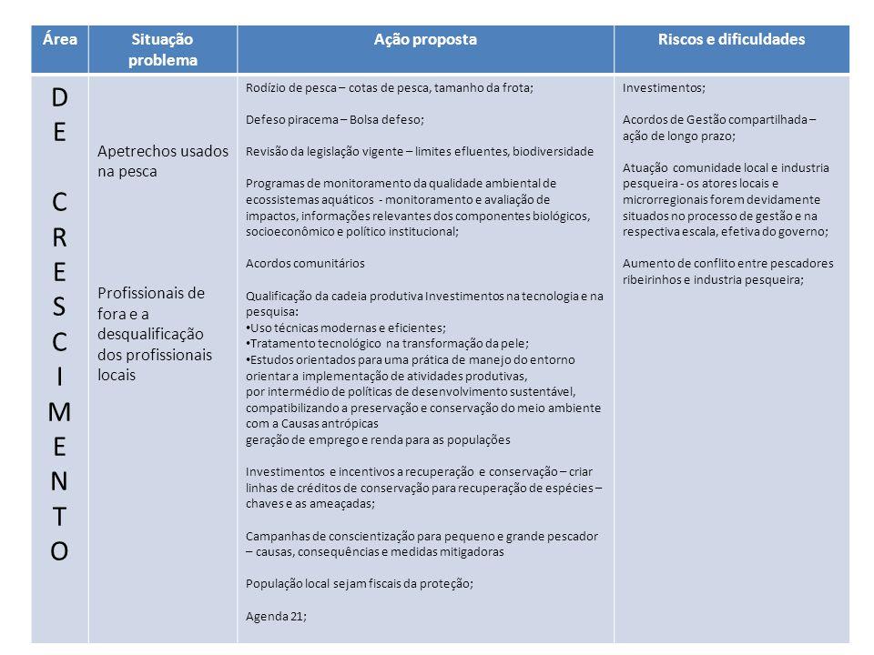 ÁreaSituação problema Ação propostaRiscos e dificuldades DECRESCIMENTODECRESCIMENTO Apetrechos usados na pesca Profissionais de fora e a desqualificaç