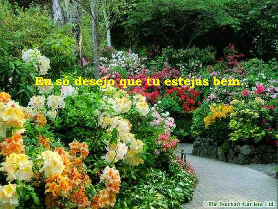 Nesse lugar onde estás, deixa que essas flores falem por mim... Nesse lugar onde estás, deixa que essas flores falem por mim...