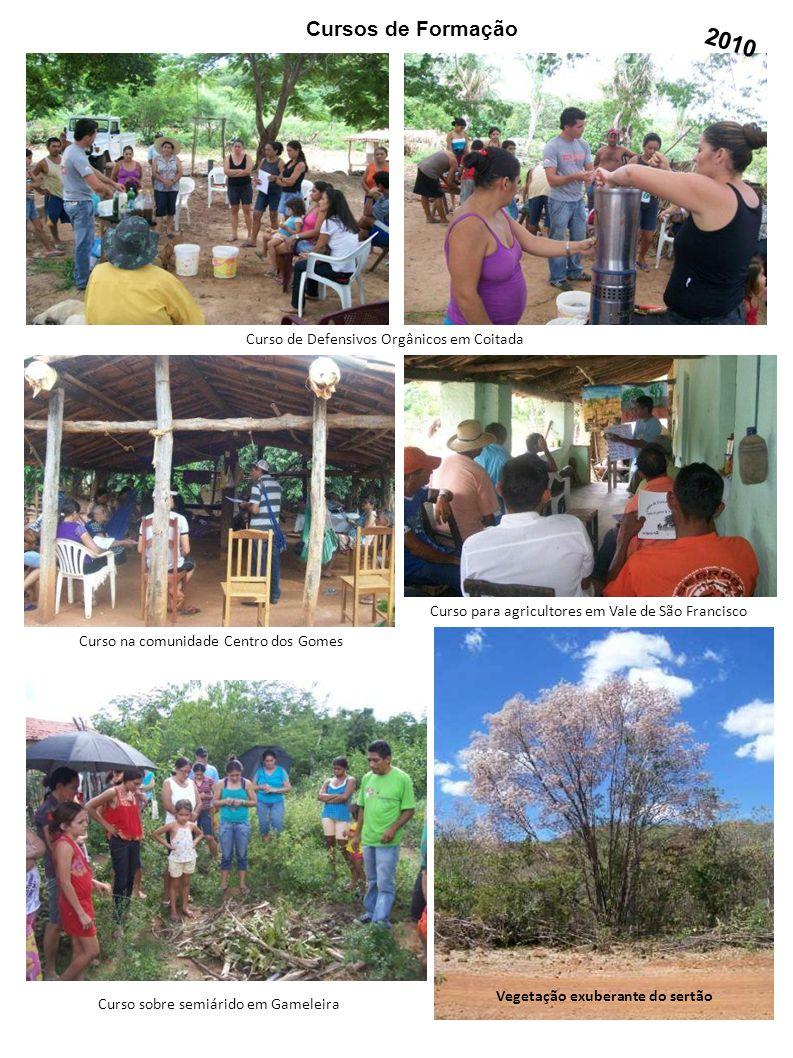 Cursos de Formação Curso na comunidade Centro dos Gomes Curso de Defensivos Orgânicos em Coitada Curso para agricultores em Vale de São Francisco Curs