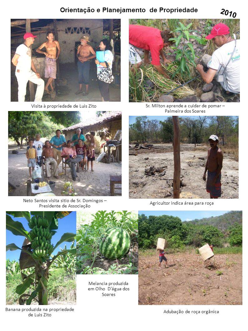 Orientação e Planejamento de Propriedade Visita à propriedade de Luis Zito Agricultor indica área para roça Adubação de roça orgânica Melancia produzi