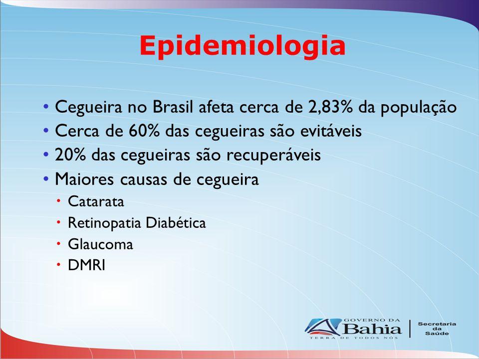 Epidemiologia Cegueira no Brasil afeta cerca de 2,83% da população Cerca de 60% das cegueiras são evitáveis 20% das cegueiras são recuperáveis Maiores causas de cegueira Catarata Retinopatia Diabética Glaucoma DMRI