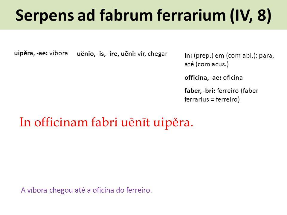 Serpens ad fabrum ferrarium (IV, 8) In officinam fabri uēnīt uipěra. A víbora chegou até a oficina do ferreiro. uĕnio, -is, -ire, uēni: vir, chegar ui