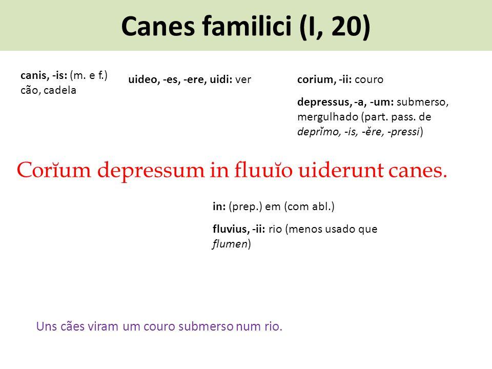 Canes familici (I, 20) Corĭum depressum in fluuĭo uiderunt canes. Uns cães viram um couro submerso num rio. uideo, -es, -ere, uidi: ver canis, -is: (m