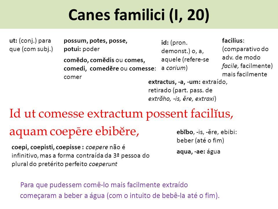 Canes familici (I, 20) Id ut comesse extractum possent facilĭus, aquam coepēre ebibĕre, Para que pudessem comê-lo mais facilmente extraído possum, pot