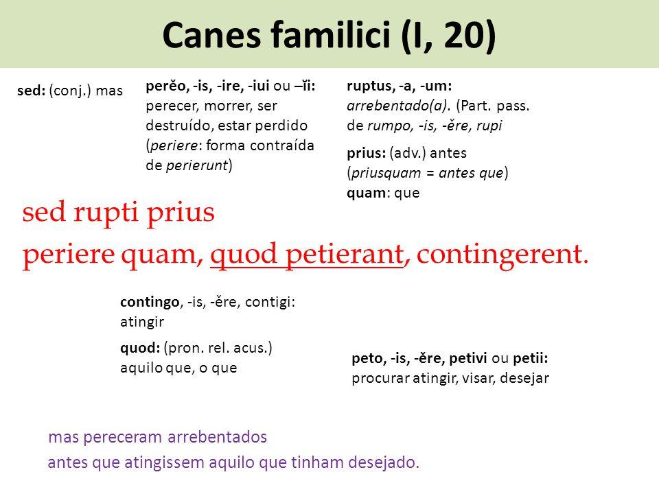 Canes familici (I, 20) sed rupti prius periere quam, quod petierant, contingerent. mas pereceram arrebentados perěo, -is, -ire, -iui ou –ĭi: perecer,