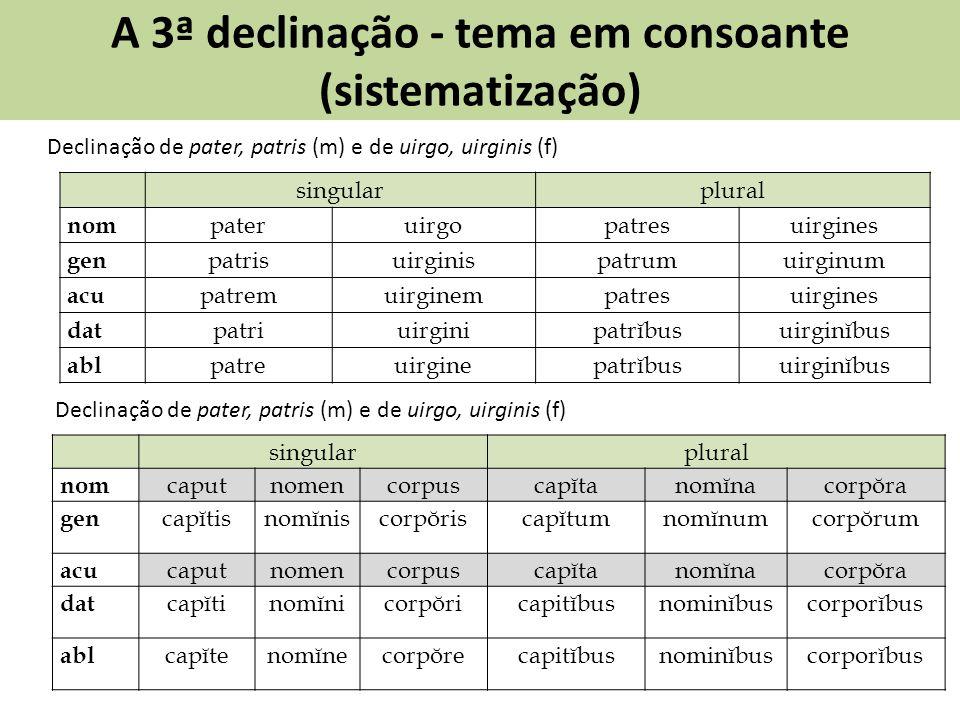 A 3ª declinação - tema em consoante (sistematização) Declinação de pater, patris (m) e de uirgo, uirginis (f) singularplural nom pateruirgopatresuirgi