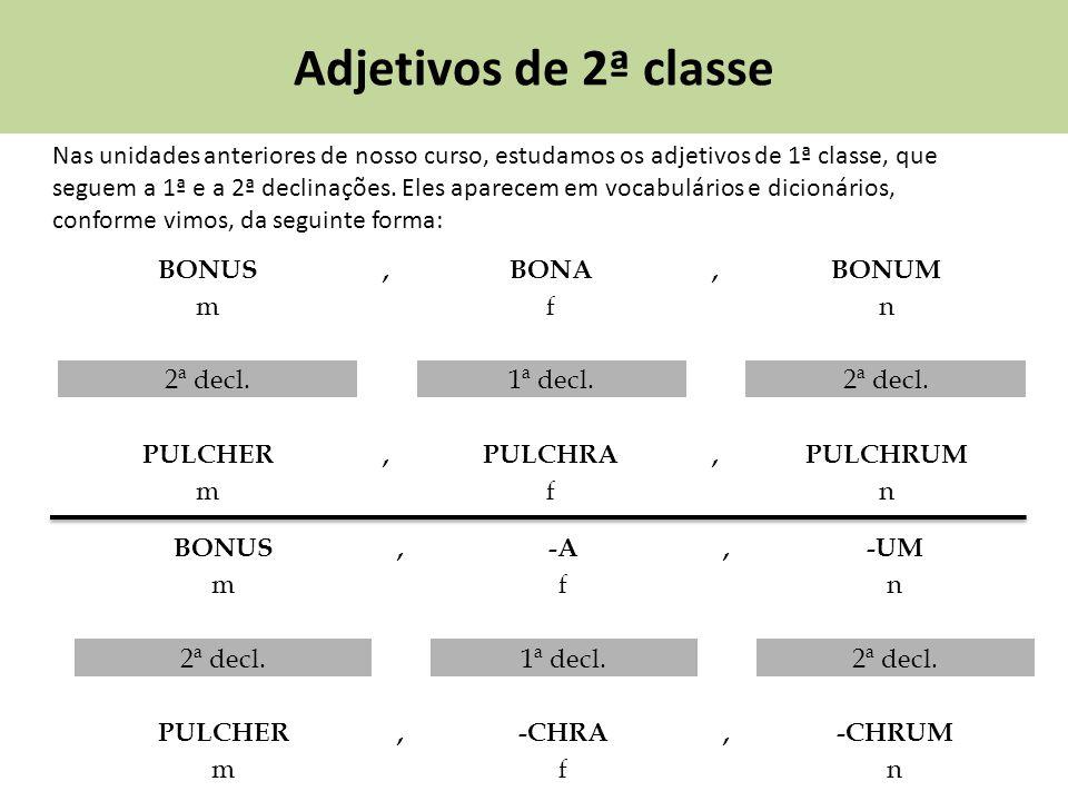 Adjetivos de 2ª classe Nas unidades anteriores de nosso curso, estudamos os adjetivos de 1ª classe, que seguem a 1ª e a 2ª declinações. Eles aparecem