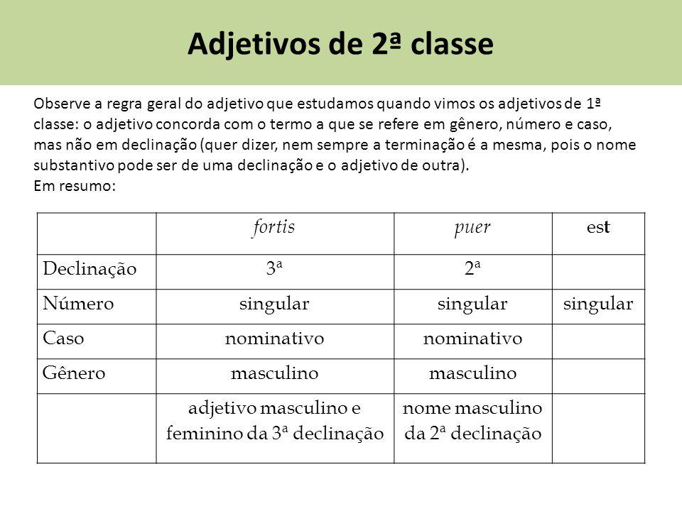Adjetivos de 2ª classe Observe a regra geral do adjetivo que estudamos quando vimos os adjetivos de 1ª classe: o adjetivo concorda com o termo a que s