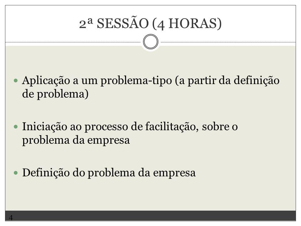 2ª SESSÃO (4 HORAS) Aplicação a um problema-tipo (a partir da definição de problema) Iniciação ao processo de facilitação, sobre o problema da empresa