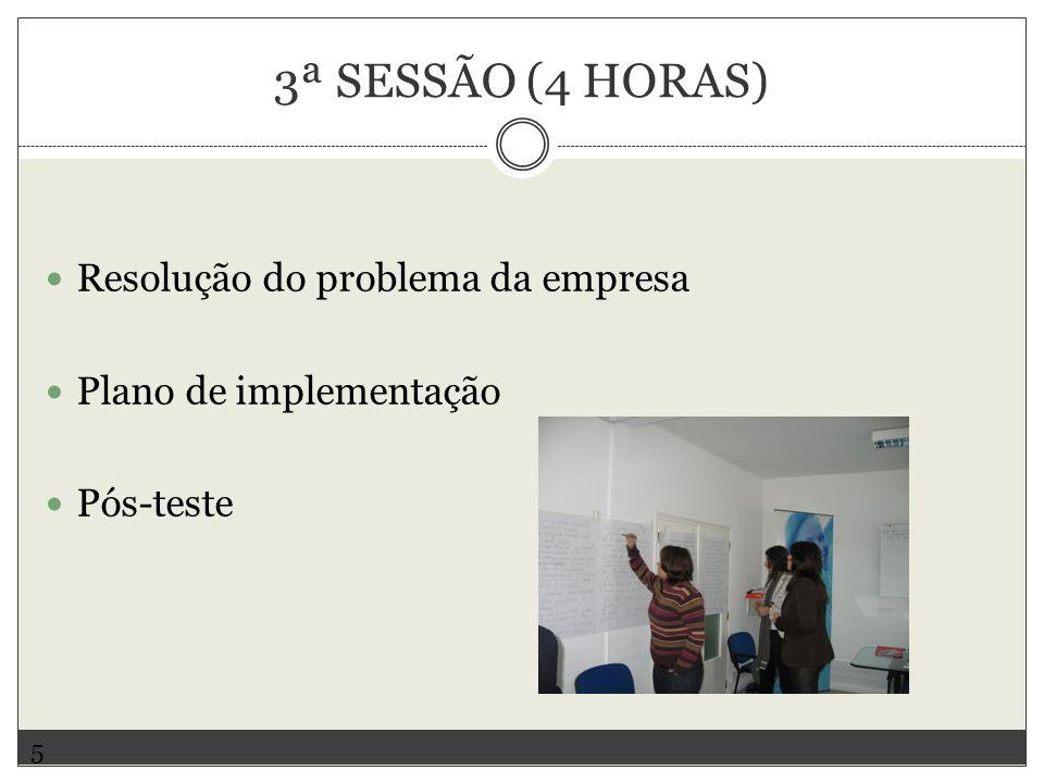3ª SESSÃO (4 HORAS) Resolução do problema da empresa Plano de implementação Pós-teste 5