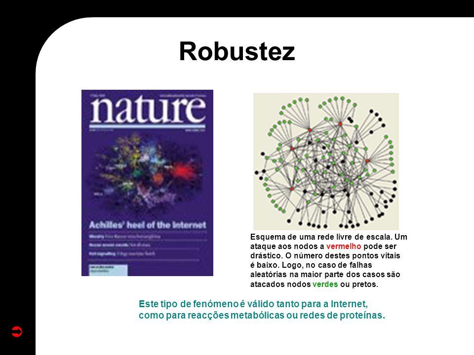 Este tipo de fenómeno é válido tanto para a Internet, como para reacções metabólicas ou redes de proteínas. Esquema de uma rede livre de escala. Um at