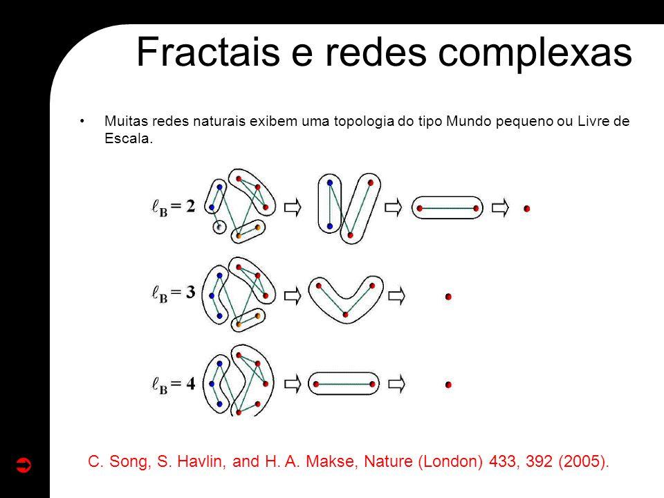 Muitas redes naturais exibem uma topologia do tipo Mundo pequeno ou Livre de Escala. Fractais e redes complexas C. Song, S. Havlin, and H. A. Makse, N