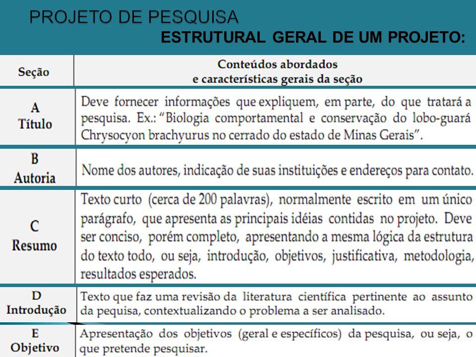 Prof. Givaldo Rocha Niella 7 ESTRUTURAL GERAL DE UM PROJETO: