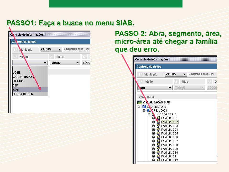 PASSO1: Faça a busca no menu SIAB.