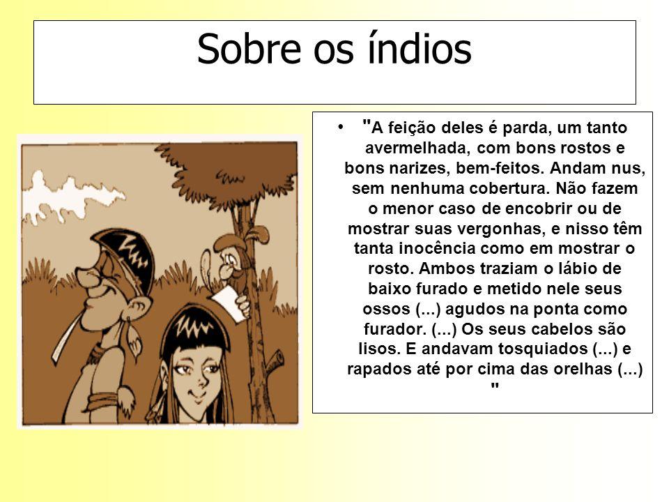 Sobre os índios